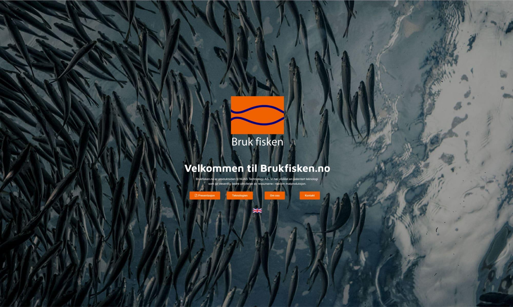 brukfisken nettside eksempel
